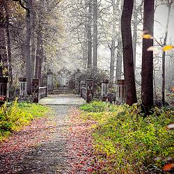 Kasteel Heeswijk in de herfst