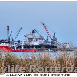 Citylife Rotterdam - Maasvlakte