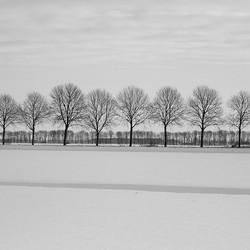 Winterwonderland ...