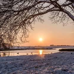 Winter in de polder van de Krimpenerwaard