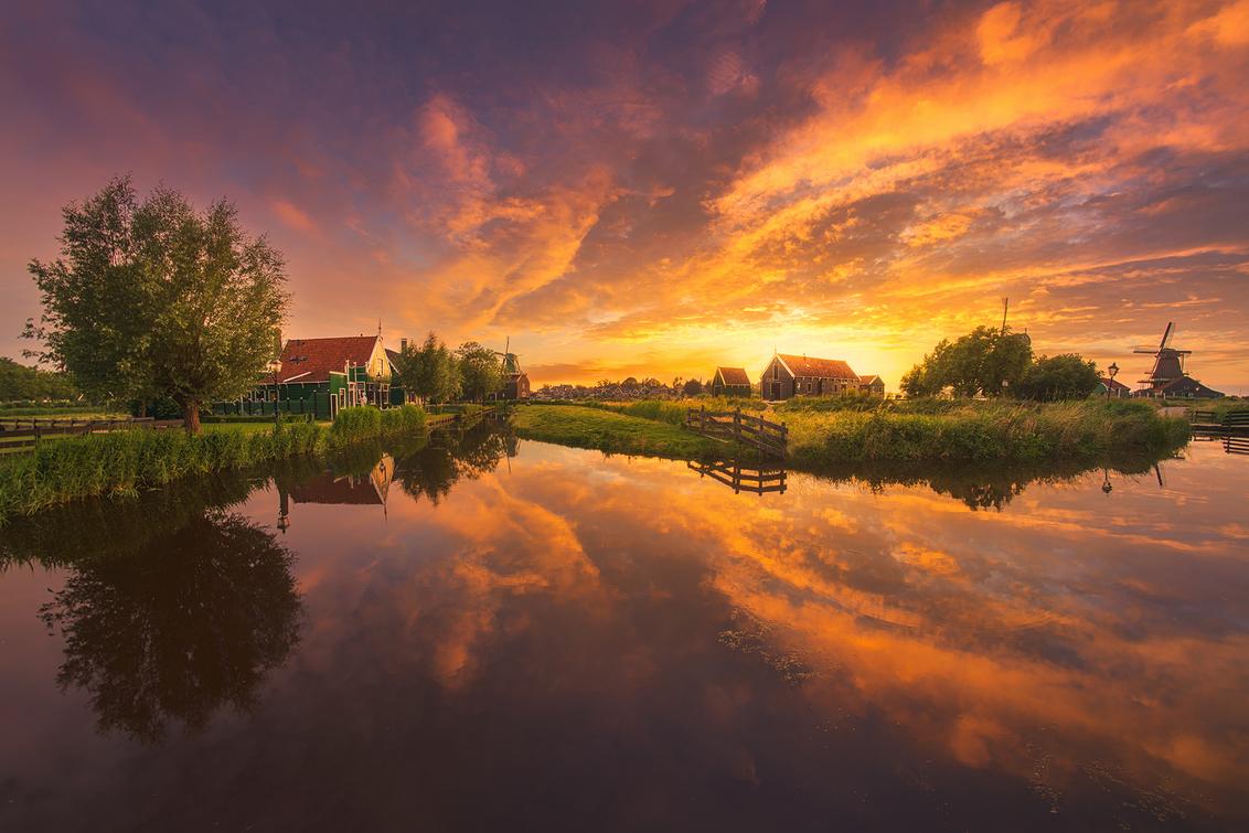 Dutch Summer!
