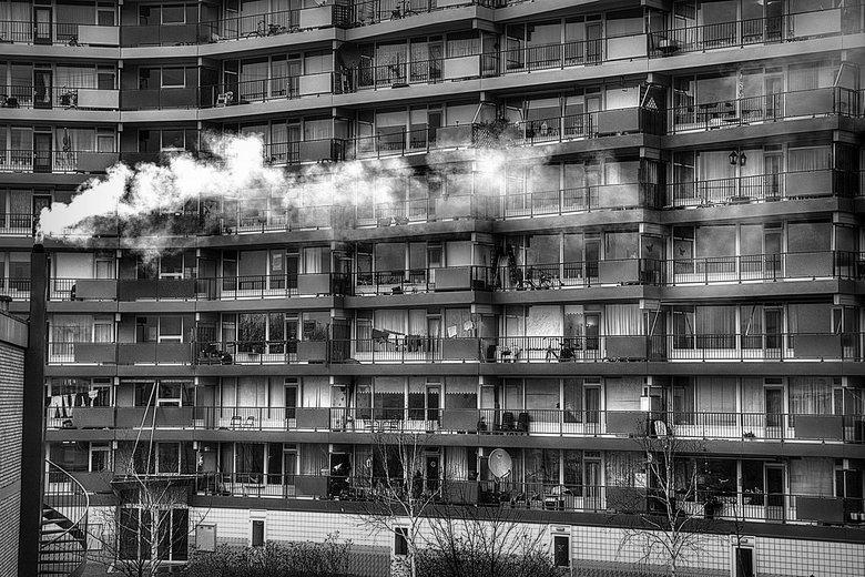 The Neighbours.jpg - The Neighbours.<br /> <br /> Er is zo veel te zien ...  <br /> Mensen lijken zo enorm veel op elkaar.