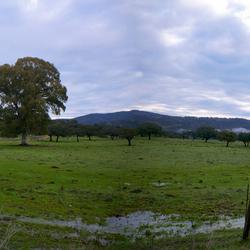 Panorama Sierra Morena Monestrio 1