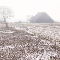 Verstilde Biesbosch