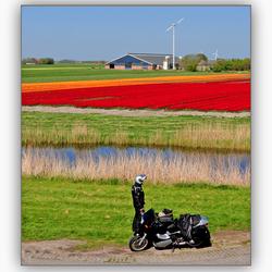 Cornwerd Friesland