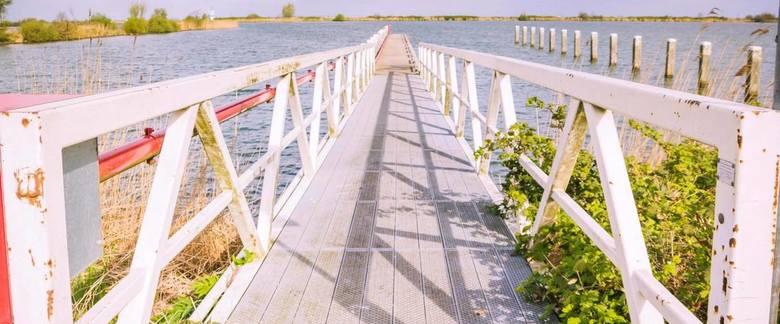 steiger - Steiger aan het water