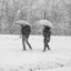 Snow and umbrellas sense or nonsense