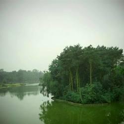 Stille natuur