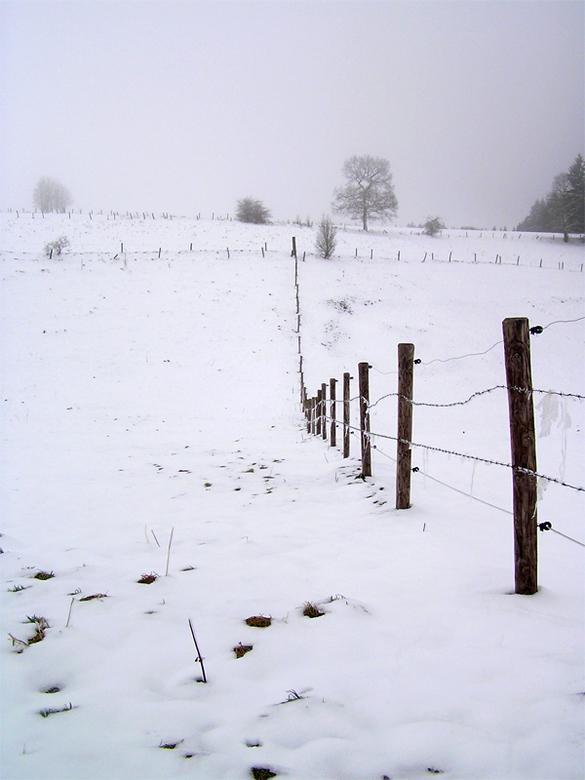 Fence - Sneew in Liège
