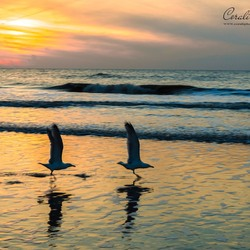 Wijk aan Zee Sunset