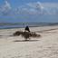 het strand op Zanzibar