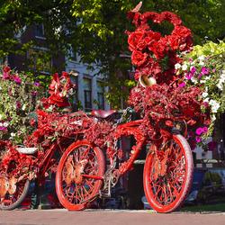Heeeele rooie fiets