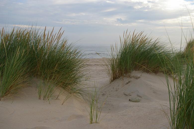 Eenzame fles - Een lege fles in de duinen. Nog even na genieten van de vakantie in Zeeland.