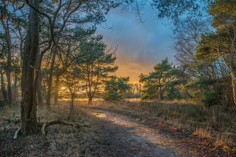 zonsondergang Pannenhoef - Zonsondergang natuurgebied Pannenhoef omgeving Etten-Leur/gemeente Rucphen/Zundert 10 januari