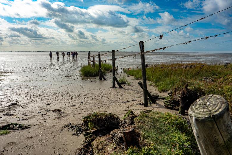 Wadlopers komen aan - Deze foto heb ik gemaakt tijdens mijn vakantie op Ameland. De wadlopers komen vanaf Friesland na een tocht van wat ik begreep 6