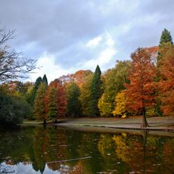 Heerlijk herfst
