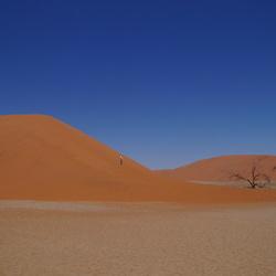 Dune 45 Namibië Uitzicht