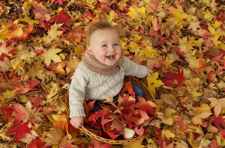 Kleuren van de Herfst -