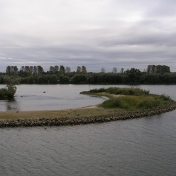 Biesbosch Noord Brabant
