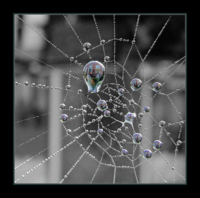 Spiegelbolletjes - <br /> Onze eigen gevel gespiegeld in de waterdruppeltjes van een spinneweb.<br /> <br /> gr. Ben<br />