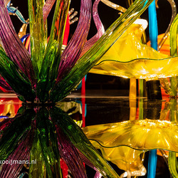 Expositie Chihuly in Groninger museum
