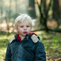 Kleine jongen in het bos