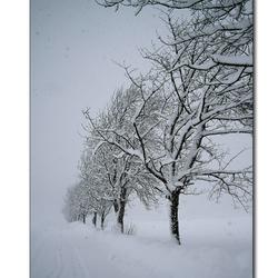 Winter in Elmen 9