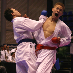 Dutch Open - Kumite