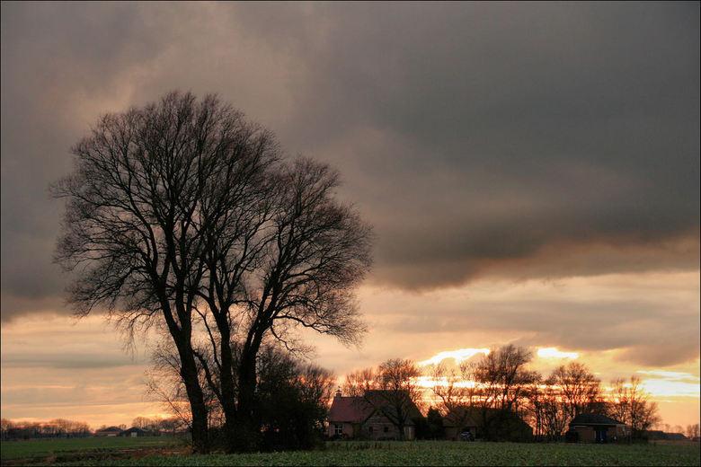 Zonsondergang Justerpad - Mijn Favo boom bij het Justerpad in Loppersum