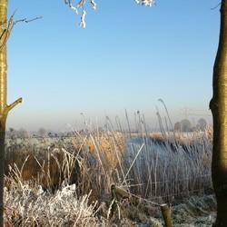 winterlandschap Coelhorst(Hoogland)