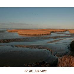 OP DE DOLLARD
