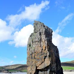 a rocky penguin