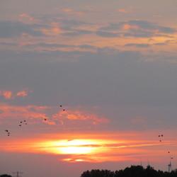 Flyers on the Sun....