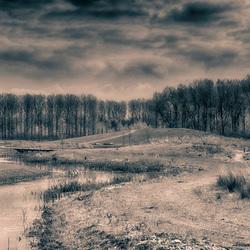 Het klauterwoud