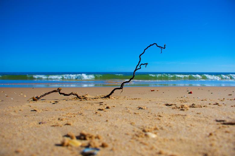 """strand stilleven 1 - dag 19:<br /> <br /> Even pootje baden.<br /> <br /> zie meer:<br /> <a href=""""https://opdetandemdoorportugal2019.wordpress.c"""