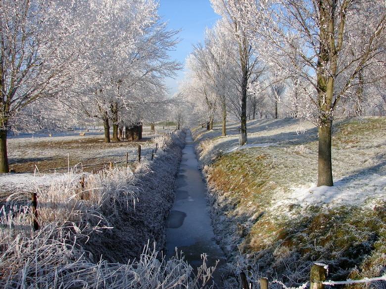 winter - de foto is gemaakt bij Piershil.