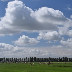 Hollandse luchten...