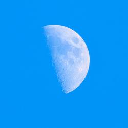Maan bij daglicht