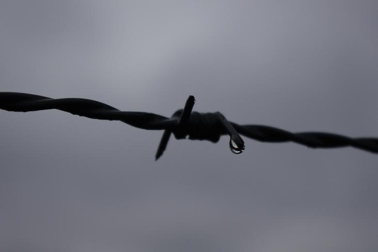 01_Ubex_Ede_21-02-2012 - Trieste dreiging
