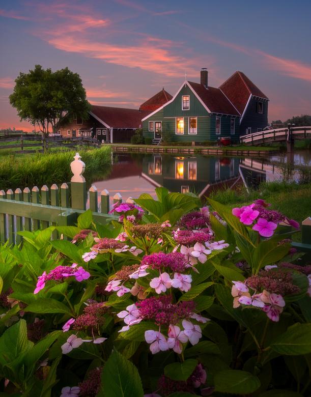 Summer vibes - Zomerse sfeer in Zaanse Schans