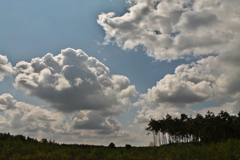 Wolkenlucht - Wolkenlucht op de veluwe