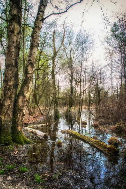 Natuurgebied Pannenhoef 16-4