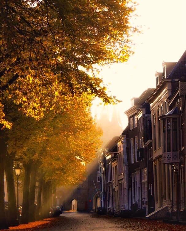 Zonlicht in de stad. - Prachtig zonlicht in Zierikzee.