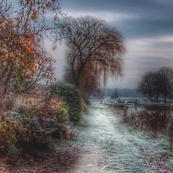 Een speldenprikje van de winter.
