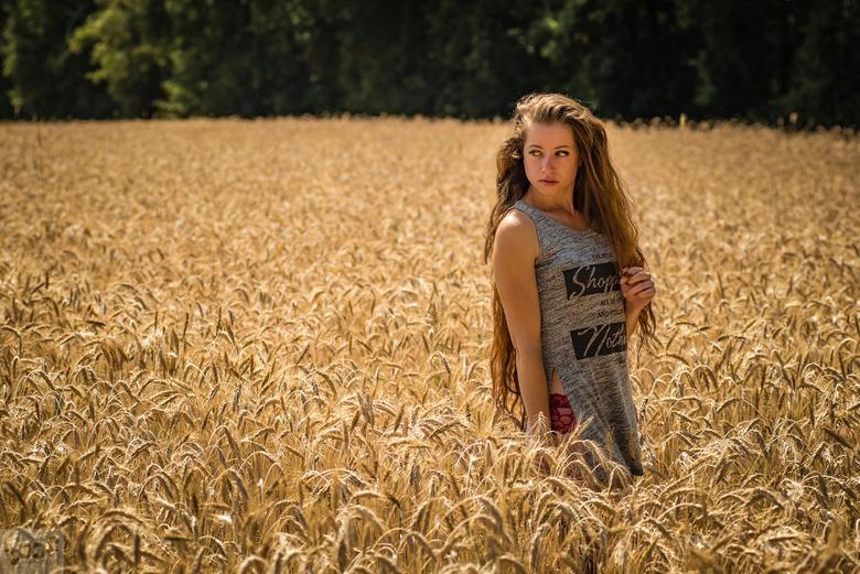 Through the fields..