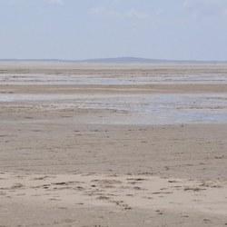 Zandvlakte Terschelling