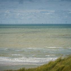 Zee van windmolens