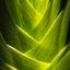 Geweven Groen