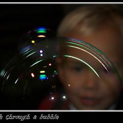 Life through a bubble
