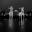 Kerstverlichting Stockholm